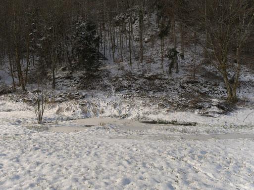 ... und die Wiese schneebedeckt.