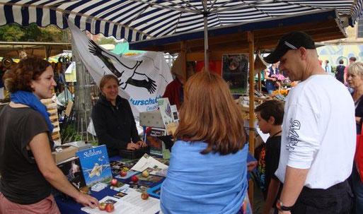 Info-Stand auf dem Wochenmarkt am 25.08.2011