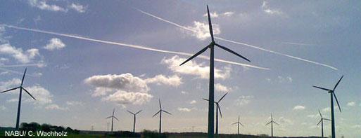 Windpark mit größerer Anzahl von Windrädern