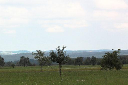 Blick nordwestlich von Langenalb in Richtung südlicher Kraichgau (G. Franke, 19.09.2021)
