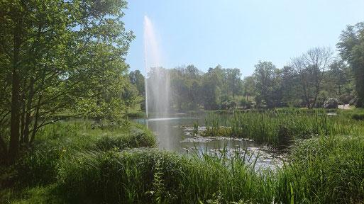 Für eine Kurzwanderung in der Nähe ist eine Tour zwischen Waldbronn-Reichenbach und Waldbronn-Etzenrot sehr gut geeignet - abwechlungsreich und viel zu entdecken; Kurpark Waldbronn (G. Franke, 17.05.2020)