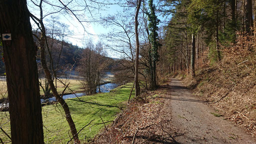 unterwegs im Albtal zwischen Fischweier und Marxzell (G. Franke, 17.02.2019)