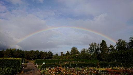 Regenbogen - Blick von der Garten Oase Jansen, Karlsbad-Spielberg (G. Franke, 25.09.19)