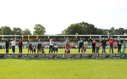 Bundessiegerprüfung 2015 in Meppen