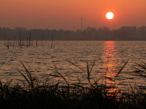 Sonnenaufgang über der Müritz bei Zielow     Foto: Bodo Rudolph