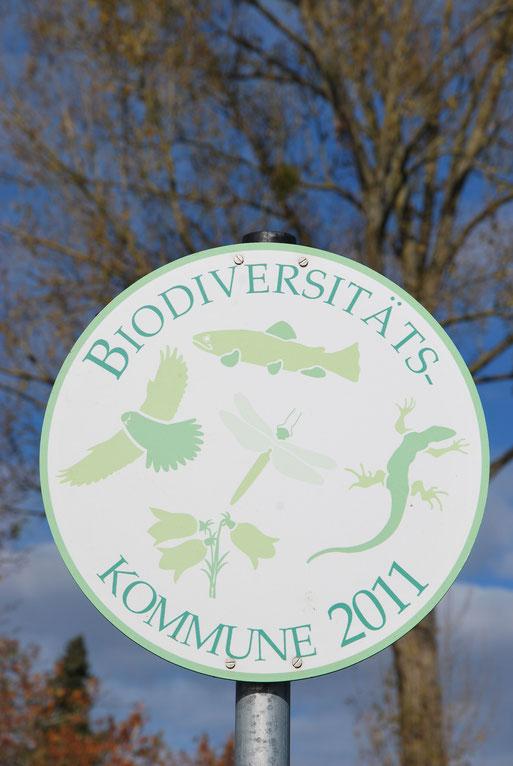Bild: Biodiversitätskommune 2011 Stadt Ravensburg