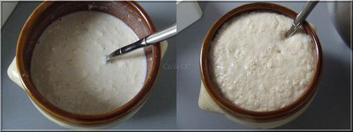 Levain pour tarte brioche