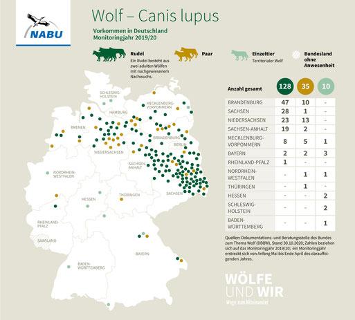 Mitteldeutsche Tieflandpopulation - Vorkommen in Deutschland, Monitoringjahr 19/20