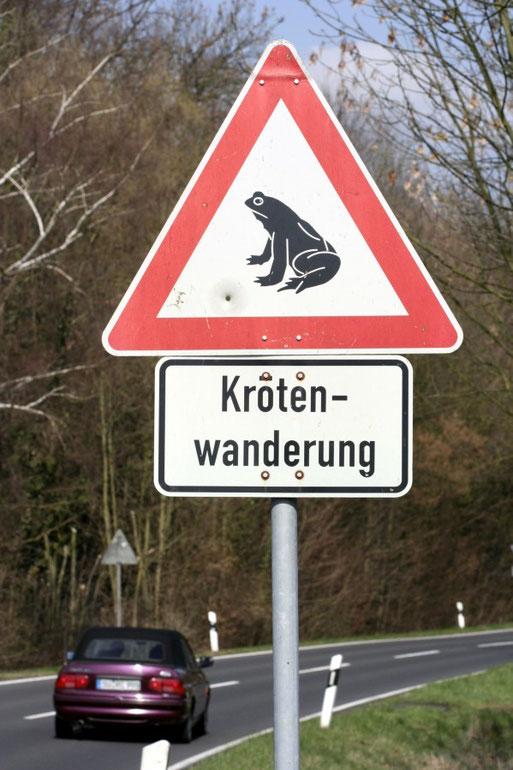 Krötenwarnschild Foto: NABU/H. May