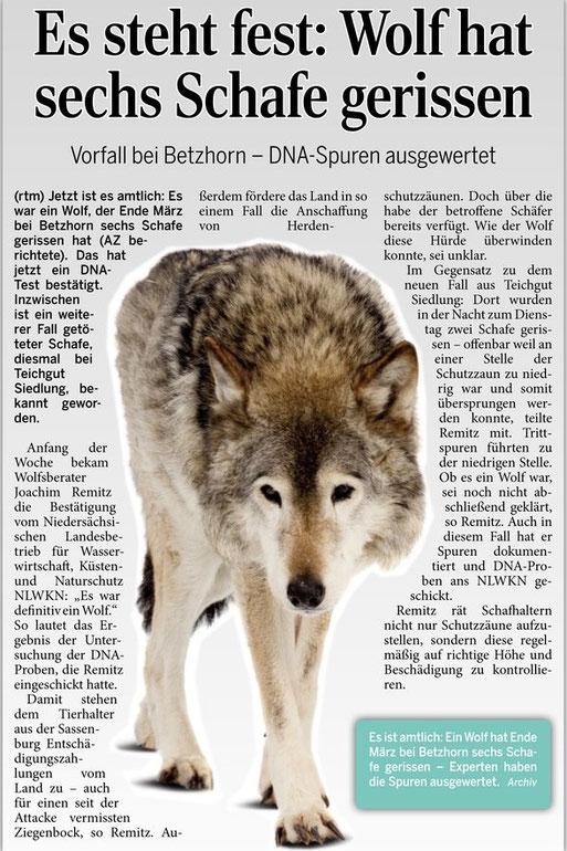 mit freundlicher Genehmigung Aller Zeitung 16.04.2015