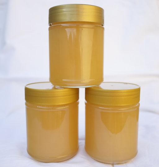 Bild Honiggläser