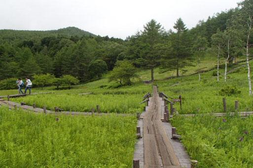 入笠山 登山 ガイド