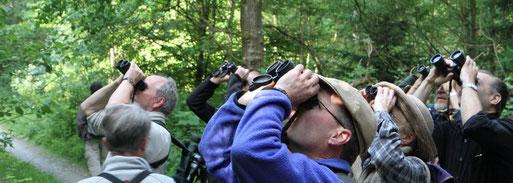 Gemeinsam Natur beobachten und schützen (Foto: P.Bossenmaier)