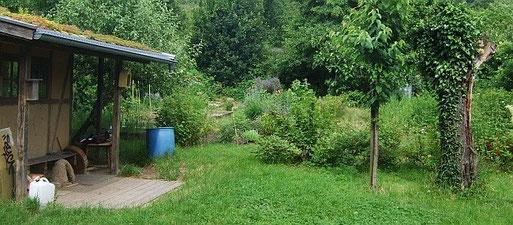 Der NABU-Garten in Handschuhsheim