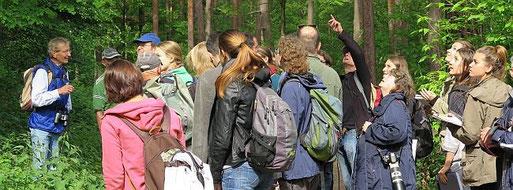 Exkursion ins Naturschutzgebiet Hirschackerwald am 31. Mai 2015. Foto: Maike Petersen