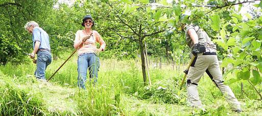 Biotoppflege: Volker Violet, Maike Petersen, Phil Kremer
