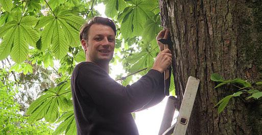 Christopher Paton hängt am Bergfriedhof einen Fledermauskasten auf