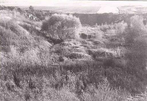 Grube Schleipfad 1085. Foto: NABU-Archiv