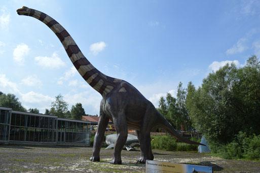 Solche Modelle wie dieser Brachiosaurs im Dinosaurier Park Münchehagen, sollen auch in Solothurn stehen.