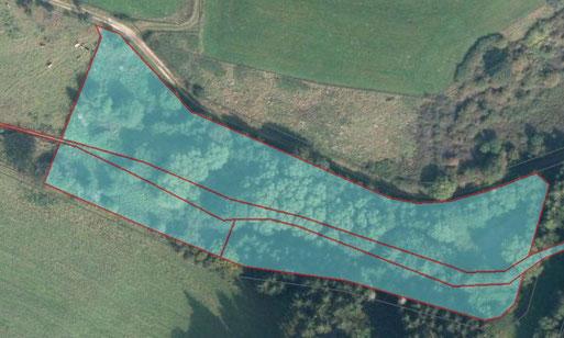 Luftbild des Grundstückes