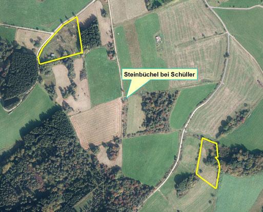 Lage der NABU-Grundstücke südöstlich und nordwestlich des Steinbüchel-Gipfels (Quelle: LANIS)