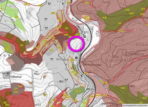 Auszug aus dem Biotopkataster des Landes mit Lage des geplanten Stalles (Quelle: LANIS Rheinland-Pfalz). Farbig markiert sind die Schutzgebiete und die kartierten Biotoptypen. Rot umrandet sind die gesetzlich geschützten Biotoptypen.