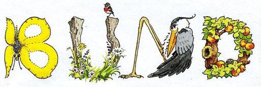 Zeichnungen: J.R. Vos