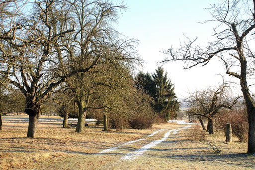 Winterweg; Januar 2017