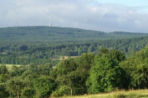 Blick zum Winterstein; Juni 2017