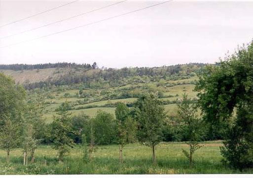 Leutra