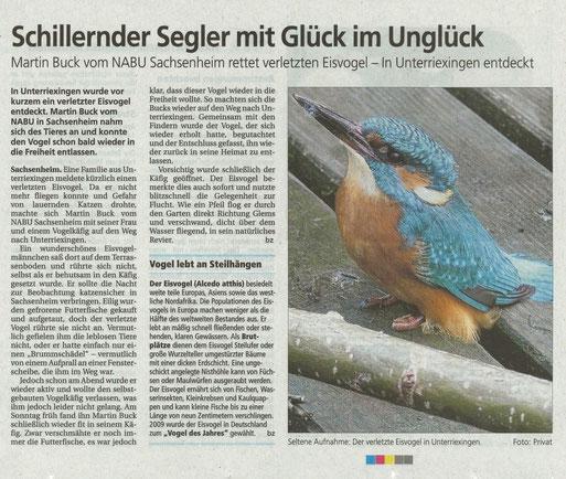BZ am 30.12.2011 über Rettung Eisvogel