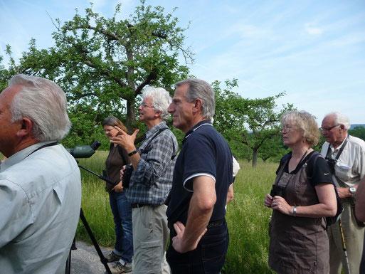 Die Führung ging durch Streuobstwiesen des Donnersbergs zum Naturschutzgebiet Unterer See
