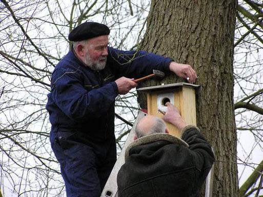 Fritz Engelken und Vincenz Rettigbeim Anbringen der Nistkästen