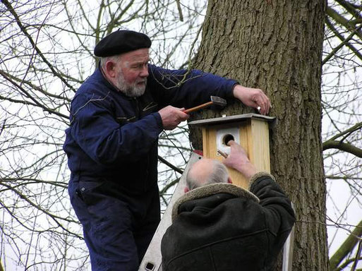 Fritz Engelken und Vincenz Rettig beim Anbringen der Nistkästen