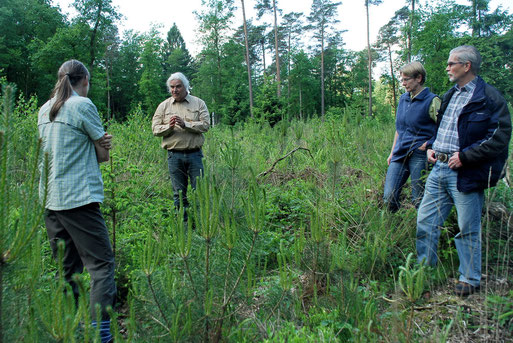 Henning Küper erläutert, was die Vegetation über den Boden aussagt.