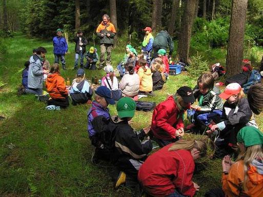 Auch ein Picknick im Wald darf nicht fehlen