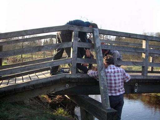 Später werden die Nistkästen unter geeigneten Brücken angebaut