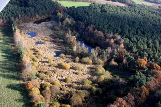 Mehrere verschieden große Teiche wurden geschaffen - hier eine Luftaufnahme aus 2007