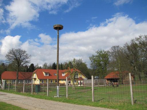 Storchenhorst am Landpark in Lauenbrück