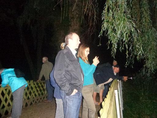 Teilnehmer der Fledermauswanderung beobachten Wasserfledermäuse an den Erlengrundteichen
