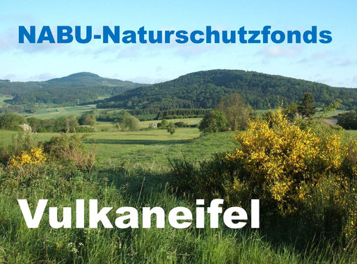 Vulkanlandschaft mit Ernstberg (li.) und Asseberg (re.); Foto: NABU-Daun