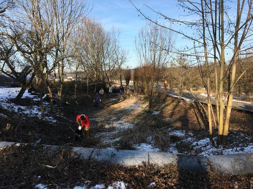 Pflegeeinsatz im Frühjahr 2017: Laichgewässer in Völkleshofen