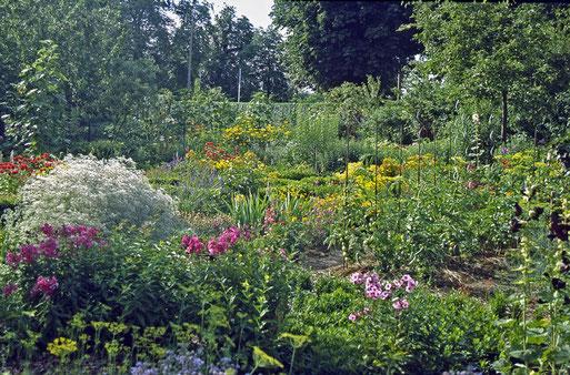 Bunte Mischung aus Gemüse und Blumen