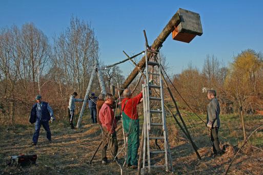 Die Errichtung des Mastes mit Kasten im NABU- Erlebnisgarten war eine echte technische Herausforderung