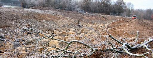 Zugwiesen am 11.12.2011 Umgehungsgerinne