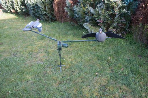 Taubenkarusell für die Taubenjagd
