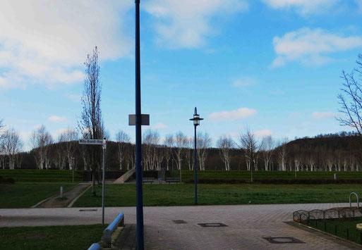 """Der so genannte Anna-""""Park"""", im Hintergrund die Anna-Bergehalden (Foto: Wolfgang Voigt))"""