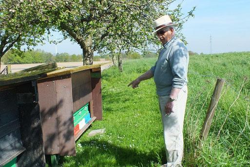 Theo Schriefers bei den Bienen im kleinen Bongert in Schlibeck