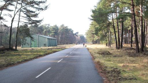 Munitionsdepot Brachter Wald, Bild: NABU Grefrath