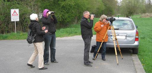 NABU Grefrath unter Leitung von Frau Deventer beim Kiebitze beobachten, Bild: Rolf Brandt